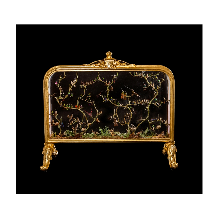 Taxidermy A rare and spectacular Victorian fire screen by H Ward with over one hundred Hummingbirds